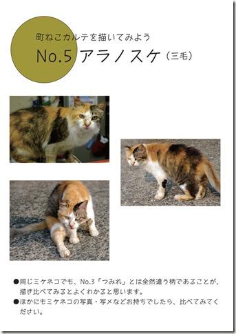 ねこ見本-5
